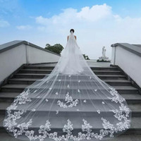 Wedding Veils Cathedral Length 2019 Lace Appliqued One Layer...