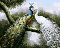 olio digitale di DIY all'ingrosso pittura pavone bianco blu e 40 * 50 frameless colorazione dipinti a mano decorazione del salone della pittura camera da letto
