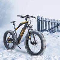 Azionamento degli Stati Uniti - Falcon Matt Black Black Smart Smart Electric Bike Motor Max 40km / h 48V 500W fino a 120 km