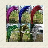 Decorazione 30-35 pollici 80-90 cm Piuma di coda di fagiano tinta, coda di lady amherst laterale, piuma di fagiano per forniture per feste