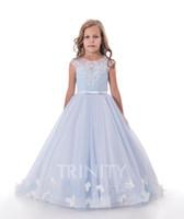 사랑스러운 푸른 핑크색 보석 Applique 소녀의 대회 드레스 꽃 소녀 드레스 휴일 / 생일 스커트 공주 스커트 사용자 정의 크기 2-14 F110137