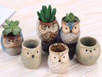 NUEVO Dibujos animados de macetas en forma de búho para suculentas Plantas carnosas Flowerpot Cerámica Pequeño mini hogar / jardín / decoración de oficina DHL gratis