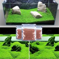 الجملة الحوض النباتات بذور العشب المياه بذور النباتات المائية داخلي نبات الزينة بذور العشب السمك الروبيان خزان زخرفة