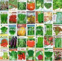 200 PC를 분재 식물 씨앗 맛있는 오이 가지 고추 호박 양배추 샬롯 당근 토마토 발코니 정원 네 계절 야채 냄비
