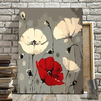 Diy Painting By Numbers For Adults White Red Flowers Paintin...