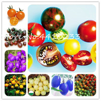 200 Stücke Bonsai Kirschtomate Bonsai Köstliche Süße Tomate Non-Gmo Obst Gemüse Essbare Lebensmittel Balkon Topf Garten Pflanzensamen