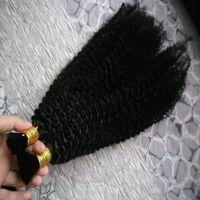 몽골어 아프리카 킨키 곱슬 머리 2pcs 웨이프 페루 헤어 묶음 200g 인간의 머리카락을 땋는 대량 부착물 없음