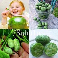 Novo ! 100 pcs raro mini frutas sementes e legumes thumb thumb watermelon bonsai polegar pepino mini melancia pepino de ácido mexicano