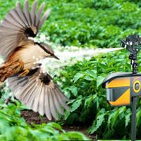 Pestcontrol Kuş Korkuluk Hareket Aktif Vahşi Hayvan Kovucu Kedi Rakun Sincap Tavşanlar Sürüş Haşere Kontrolü Ev