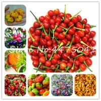 200 Pcs brasileira cereja do pimentão Hot Pepper Bonsai sementes de plantas deliciosas Vegetais orgânicos Carolina Reaper Hot Chilli Bonsai outdoor planta Po