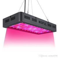 Lampe de croissance 1000W Spectrum complet avec double puces 10W ampoules de croissance pour les plantes intérieures hydroponiques en serre poussant les lumières LED