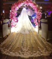 جديد وصول 2019 الزفاف الحجاب طول الكاتدرائية طول الزفاف الحجاب الدانتيل حافة مع اخياد الوجه appliqued 3 متر طويلة 1T مخصصة