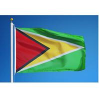 Bandeira de Guyana 3x5ft alta qualidade 100D Polyester suspensão vôo Qualquer Estilo 90x150cm Nacionalidade País Bandeira da bandeira Drop Shipping