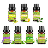 6pcs Kiuno 10ml Set 100% Pure Plante Diffuseurs d'aromathérapie Huile essentielle pour l'humidificateur Lampe de parfum Air aromathérapie Huile de corps