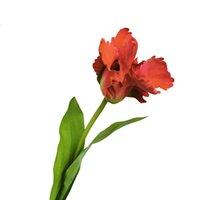 Найти искусственные цветы весной, как этот прекрасный реальный сенсорный попугай тюльпан проистекают в красный цвет. Эти жизни как поддельные тюльпаны уверены принести элегантность дома