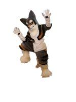 Hot جودة عالية ريال صور ديلوكس fursuit الكلب التميمة حلي أجش التميمة شخصية حلي الكبار الحجم شحن مجاني