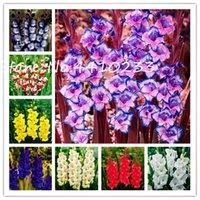 200 PC / bolso plantas perennes gladiolo flor Bonsai semillas de 24 colores a elegir raras plantas lirio de espada muy fragante para jardín Bonsai
