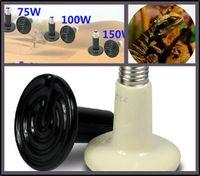 110v / 220v 150W Керамические Излучатель обогреваемых Pet техник Reptile Heat Lamp Light