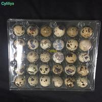 Venda por atacado Hot novos 24 Holes Quail ovo recipientes de plástico caixas de ovos 1000pcs / frete grátis monte