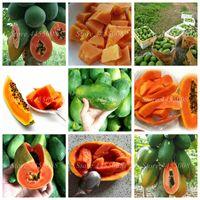 60 PC / 가방 씨앗 분재 유기농 파파야 가보 야채 과일 식물 나무 식용 붉은 마음 파파야 식물 정원 장식 쉽게 성장