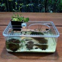 Plástico Transparente Tanque de Peixe Inseto Réptil Croading Caixa de Alimentação de Grande Capacidade Aquário Habitat Tub Turti Tank Platform
