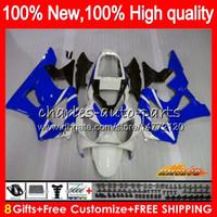 Bodys pour HONDA CBR900RR blanc bleu CBR929 RR CBR900 900RR 2000 2001 76NO.40 CBR 929RR 900 929 RR CC 900cc 929CC CBR929RR 00 01 carénages