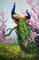 -WSI-03085 Modern djur Phoenix Peacock Handmålat Handkors Konst Oljemålning HD Print Konst Oljemålning på kanfas väggbilder