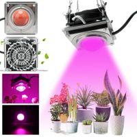 Novo 600W LED cresce luz espiga de luz lâmpada completa spectrum crescer lâmpada LED crescer luz para planta interior com ventilador de refrigeração para vegetais de plantas interior