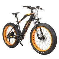 Schnelles Kühlen E-Bike Falcon Motorschlitten Geschwindigkeit mit LCD-Anzeige 5 PAS elektrisches Fahrrad 48V 13Ah 624W starken Li-Ionen-Akku mit langer Ausdauer