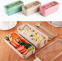 750 ml Sağlıklı Malzeme 2 Katmanlı Öğle Yemeği Kutusu Buğday Samanı Bento Kutuları Mikrodalga Yemek Gıda Saklama Kabı Lunchbox