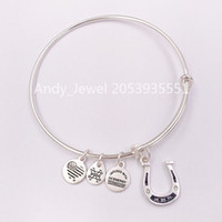 Authentic 925 Sterling Silver pendants Crystal Horseshoe Cha...