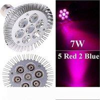 실내 LED의 성장 빛 7W 12W 24W 36W 54W E27 LED 꽃 식물 수경의 경우 램프 PAR (38) (30) 전구를 성장