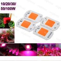 Light Beads Full Spectrum 380-840NM 110V 220V 20W 30W 50W COB Chip Lighting AccessoriesFor LED Grown Lights EUB