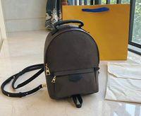 Высокое качество славы женщин Палм-Спрингс Рюкзак Мини кожа книга рюкзаки женщин печать кожаный рюкзак MN4578