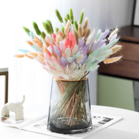 Secas Natural feliz cauda flor grama Foxtail Dog Dail ramo DIY para Home Office Party Wedding Decoração Props