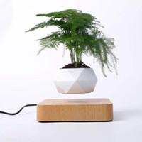 Парящий воздуха Бонсай Pot вращения Посадочные магнитной левитации Подвеска Цветок Floating Vase Герметичный завод стол Декор