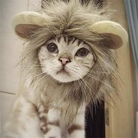 Gato engraçado bonito Pet Costume Lion Mane Wig Cap Hat para o gato para caes Natal Halloween do vestido extravagante com orelhas roupas para cães