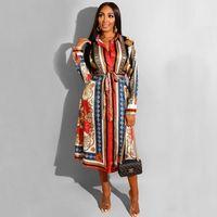 Frühlings-Damen Turn-down-Kragen Print A-Line-Arbeits-Büro Langes Kleid beiläufigen Sitz und Aufflackern-Kleid, Herbst-Frauen-Mode