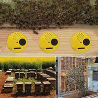 Mejores Herramientas de apicultura Precio 12 pcs / set de entrada de plástico Colmena Nuc Box Puertas Equipo de apicultura h1e0 #