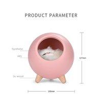 Cat Pet House Ambience Декор Настольная лампа USB для зарядки Симпатичный мультфильм MINI LED Night Light For Baby Спальня Декор Nightlight Luminar
