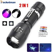 UV LED 2 in 1 Viola / Black Light luce bianca Ultraviolet Torch Ultraviolet urina Detector