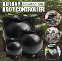 مصنع تأصيل الكرة جذر نبات ينمو صندوق مسمار تأصيل تزايد صندوق تربية الحال بالنسبة لحديقة صندوق جذر النبات