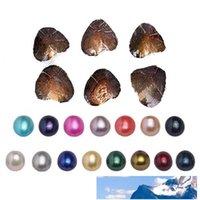 Aşk İstek İnci Oyster ile Oval İnci İçinde Doğum Günü Hediyeleri 10 Anlamlı Renkler İnci Fit İnci Kafes kolye kolye Yapımı