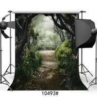 Фотография Фоны для Photo Studio Forest Castles Сказка Виниловая ткань фотопортрет задники для свадьбы Дети Ребенок