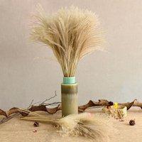 50pcs reales plantas secas flor de la boda Pequeña hierba de pampa Manojo Natural Decoración Flores secas Phragmites flor ornamental