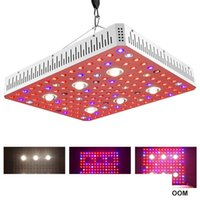 전체 스펙트럼 1000W 2000W 3000W COB LED 실내 식물 온실 성장 텐트에 대한 조명 공장 조명 성장 램프를 성장