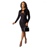 Neck Long Sleeve Dress Woman Clothes Women Dresses Sexy Mesh Sheer Solid Dresses Casual Crew