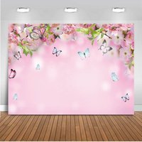 Fond de fond printemps rose thème de toile de fond papillon pêche fleurs fleurs POPory pographie enfants bébé anniversaire fête d'anniversaire
