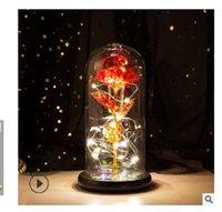 2020 la vendita calda copertura in vetro rosa luminosa Arts regalo LED San Valentino regalo di Natale e Mestieri regalo di compleanno ANC001