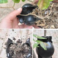 حار الحديقة فناء مصنع تأصيل الكرة جذر النبات ينمو صندوق مسمار تأصيل تزايد صندوق تربية الحال بالنسبة لحديقة صندوق جذر النبات